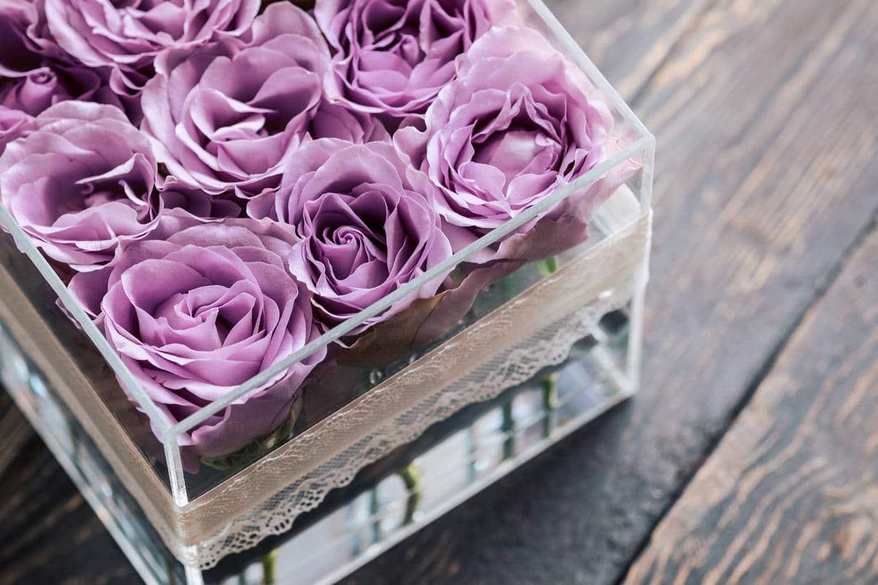 La rose éternelle se décline en divers coloris